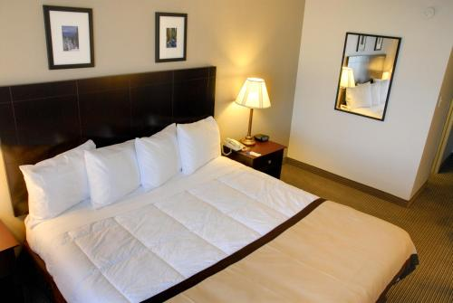 Baymont Inn and Suites Photo