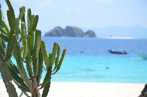 Club Paradise Resort Palawan