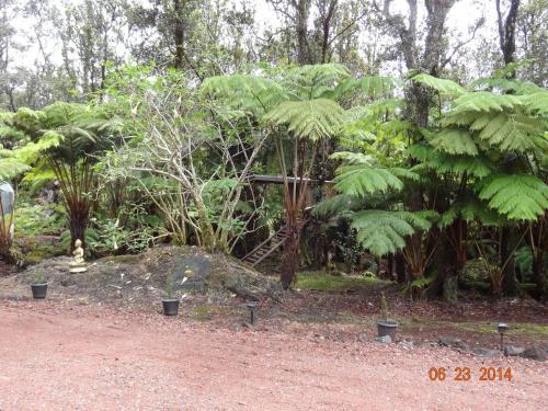 Alii Kane Cottage with Loft Photo