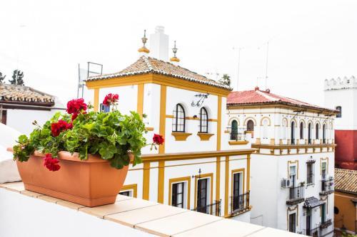 Plaza Doña Elvira 5, 41004 Seville, Spain.