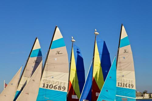 Catamaran Resort Hotel and Spa Photo