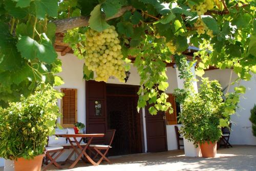 Venda de Rubió, 193, 07815 Sant Miquel de Balansat, Spain.