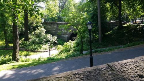 The Central Park North Photo