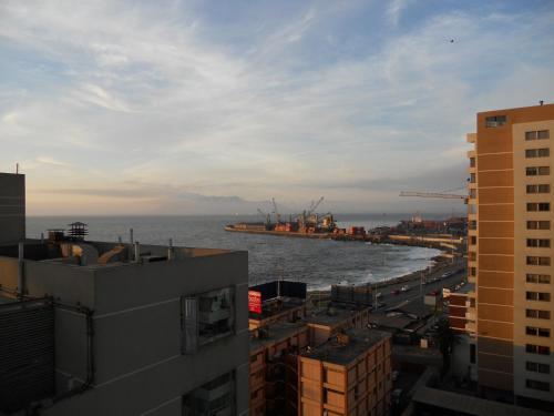 Ibis Antofagasta Photo