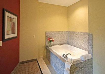 Comfort Suites Biloxi/Ocean Springs Photo