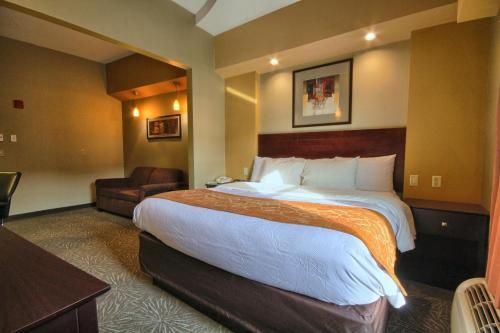 Comfort Suites Perrysburg Photo