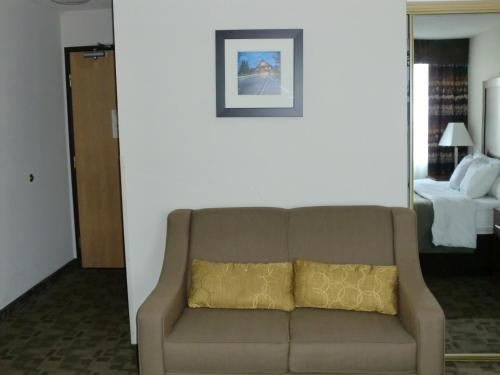 Comfort Inn Birch Run Photo