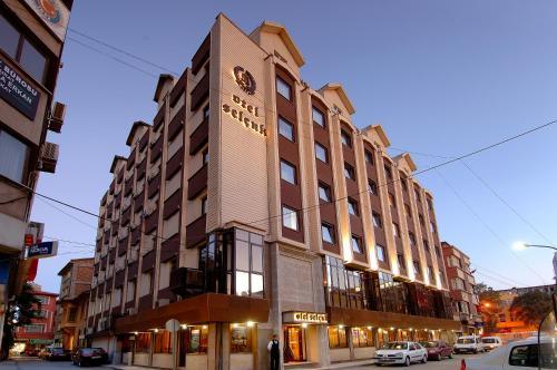 Konya Selcuk Hotel telefon