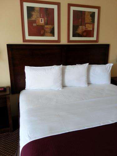 Americas Best Value Inn And Suites Little Rock - Bryant, AR 72022
