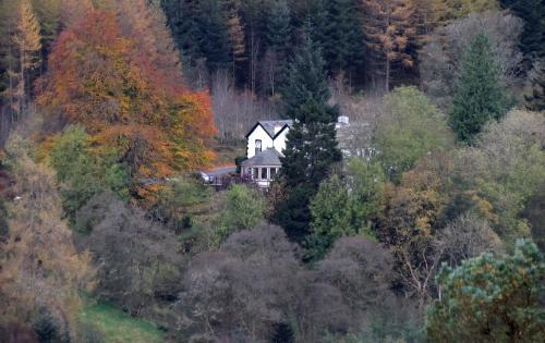Magic Hill, Whinlatter Forest, Keswick, CA12 5TW, United Kingdom.