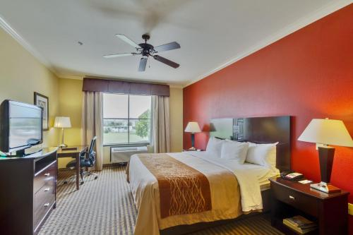 Comfort Inn-Western Center Photo