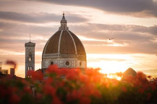 Hotel Cardinal of Florence photo 3