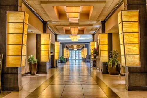 Hotels Vacation Als Near Tuscaloosa Amphitheater Usa