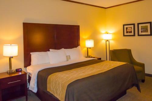 Comfort Inn & Suites Ardmore Photo
