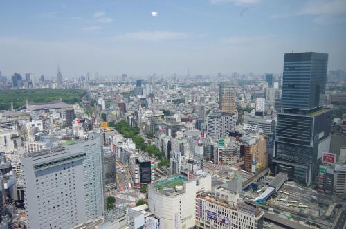 Cerulean Tower Tokyu Hotel photo 25