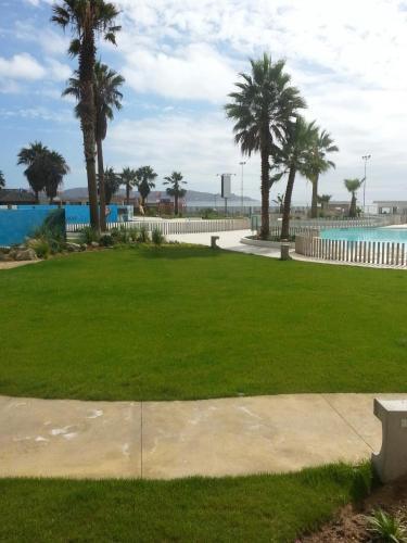 Jardín de Costanera Avenida del Mar Photo