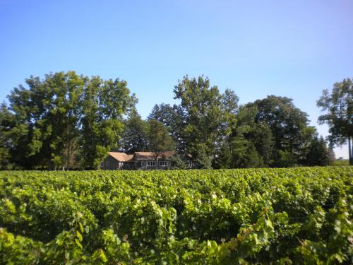 Vineyard Villa - Niagara On The Lake, ON L0S 1J0