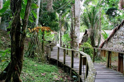 Ceiba Tops Photo