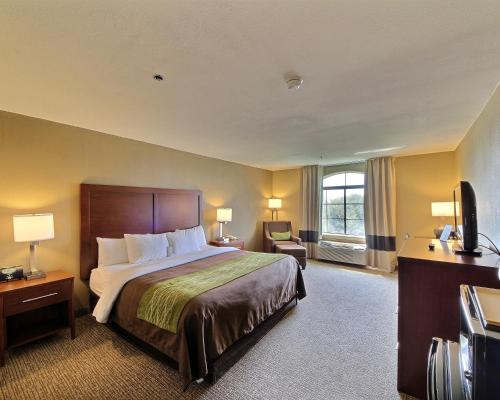 Comfort Inn Edinburg Photo