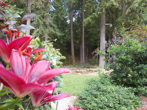 Guesthouse Mountain Escape - Revelstoke, BC V0E 2S1
