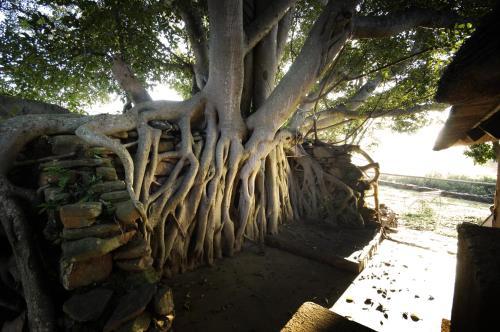 Caracal Lodge Photo