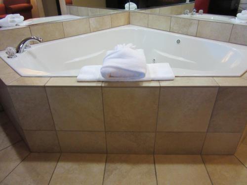 Comfort Inn & Suites Gordon Hwy - Augusta, GA 30907