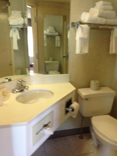 Days Inn & Suites Albany Photo