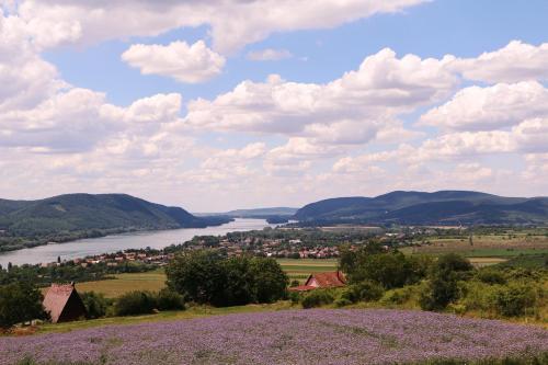 Natura Hill Vendégház és Étterem photo 7