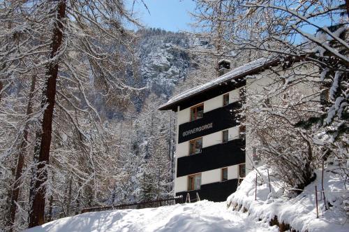 Hotel-overnachting met je hond in Gornergorge - Zermatt