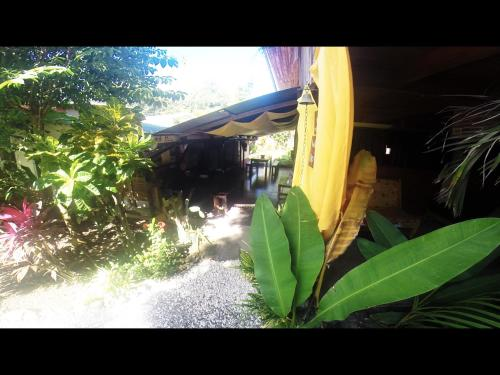 Tropical Pasta Surf House and Hostel Photo