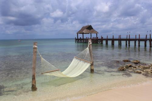 Secrets Aura Cozumel All Inclusive S Only Resort Hotel