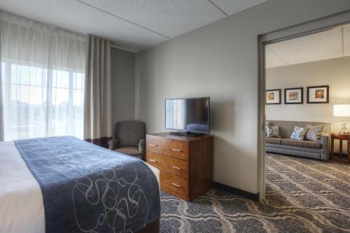 Comfort Suites Pineville Photo