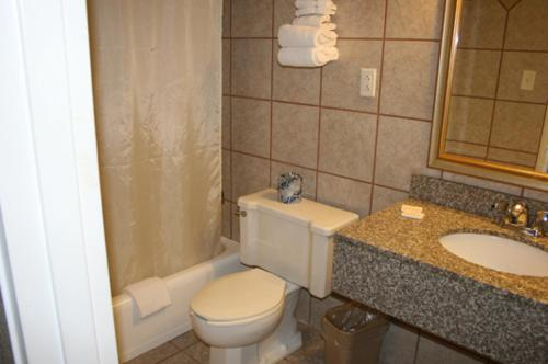 Rockford Alpine Inn And Suites - Rockford, IL 61108