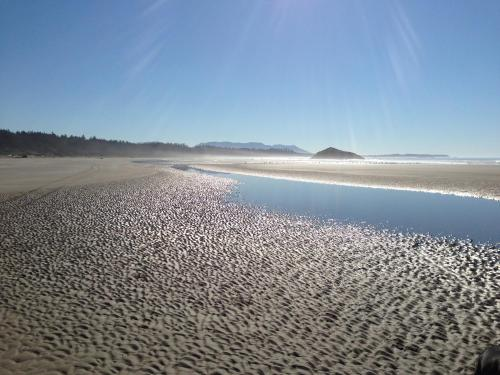 Island Village Properties At South Chesterman's Beach - Tofino, BC V0R 2Z0