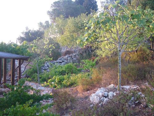 Yad Hashmona Hotel Photo
