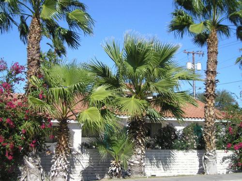 Coronado Motor Hotel - Yuma, AZ 85364