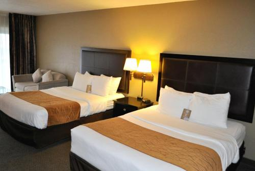 Comfort Inn & Suites Lincoln City Photo