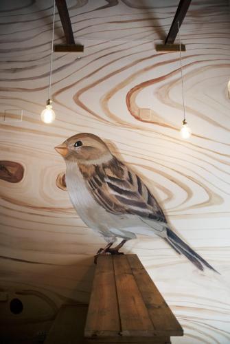 Bird House photo 38