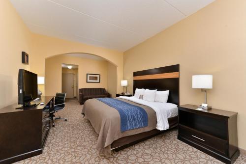 Comfort Inn & Suites at Stone Mountain Photo