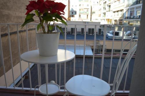 Somnio Hostels photo 30