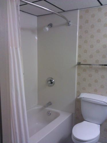 Quality Inn and Suites Kingston Photo
