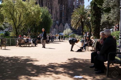 APBCN Sagrada Familia photo 22