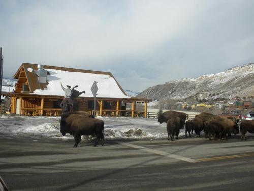 Cowboy's Lodge Photo