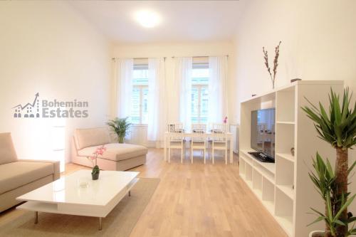 Mánesova Apartment photo 2