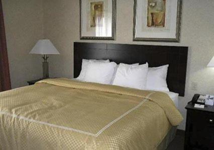 Comfort Suites Merrillville Photo