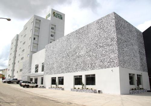 Foto de Hotel Áster