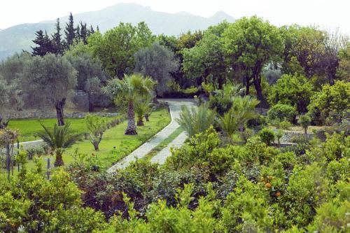 Resadiye Mahallesi No:30 Datca, Datca, 48900, Turkey.