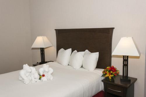 Quality Inn & Suites Yellowknife Photo
