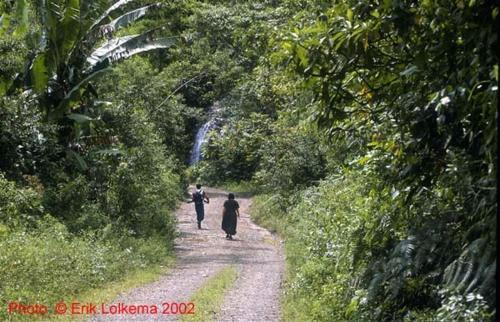 Hacienda Primavera Wilderness Ecolodge Photo