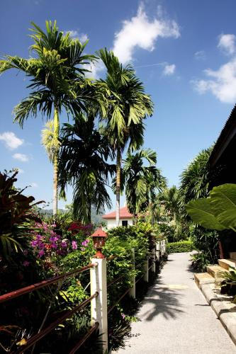Patong Cottage Hotel